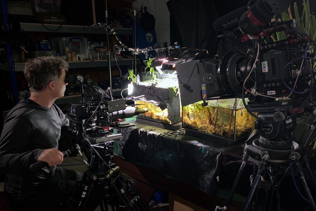 Mark Payne-Gill filming tadpoles