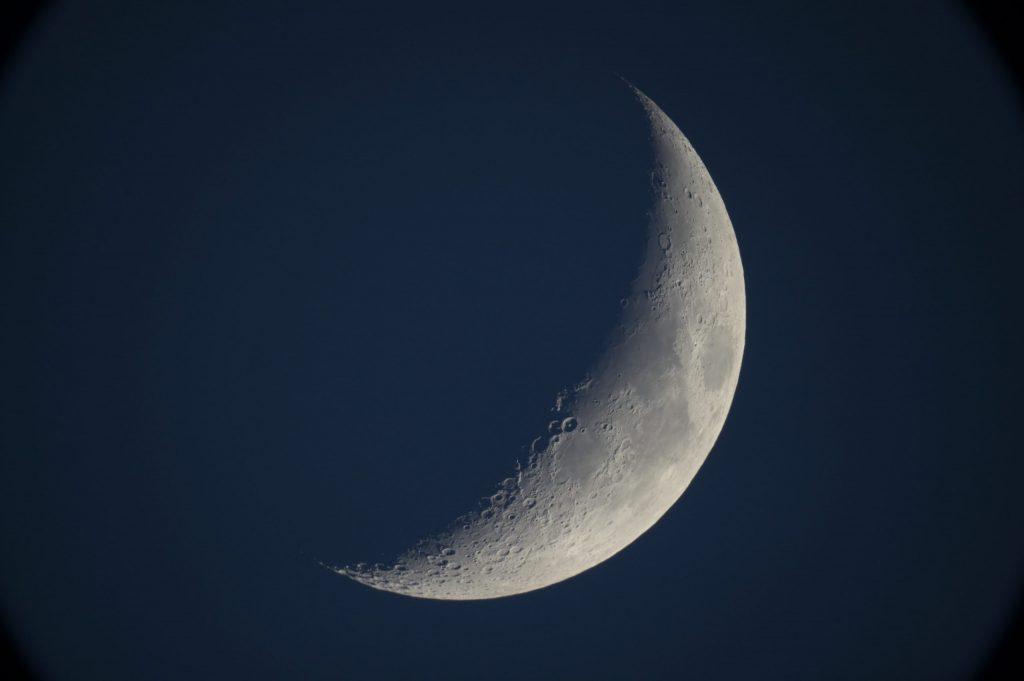 Lunar cycles influencing human animals
