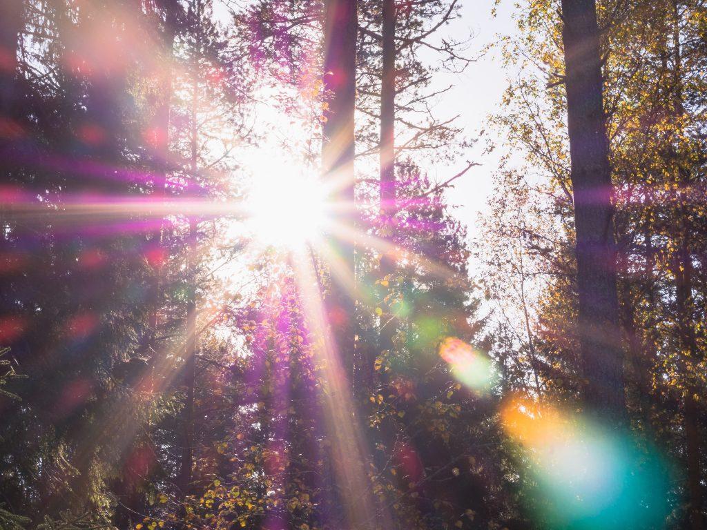 Sunlight providing A, B and C rays